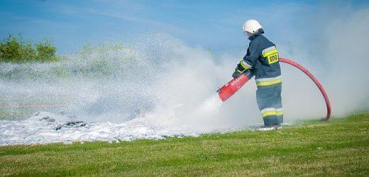 60 rodzin pszczelich spłonęło w pasiece w Małopolsce | AwKrakowie.pl